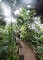 Inside Krohn Conservatory of Eden Park in Cincinnati