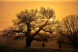 © Licensed to London News Pictures. 11/12/2019. London, UK. Wildlife photographers  were greeted with an orange sunrise over Richmond Park this morning as  weather experts predict more wind, rain and showers for voters in tomorrow's General Election on Thursday 12th December 2019. Photo credit: Alex Lentati/LNP