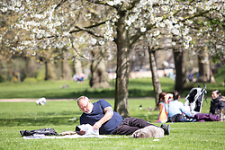 © Licensed to London News Pictures. 20/04/2016. London, UK. A man sunbathing during warm weather in St James' park, central London. The MET Office predict highs of 13 degrees celsius. Photo credit : Tom Nicholson/LNP