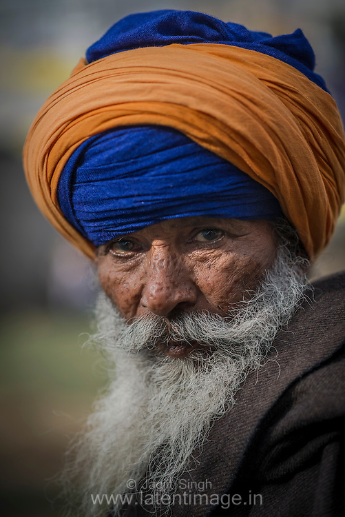Elderly Nihang at Hola Mohalla.