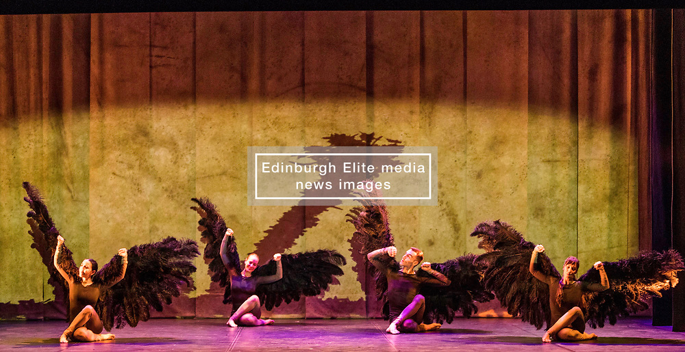 Vuelos is being performed as part of Edinburgh International Festival at Church Hill Theatre from 11-13 August 2017. It is created by Aracaladanza, a dance theatre company from Madrid.  Vuelos draws on Leonardo da Vinci's drawings, paintings and sculptures. <br /> <br /> Dancers included in pictures are Carolina Arija Gallardo, Jimena Trueba Took, Jonaton de Luis Mazagatos, Jorge Brea Salgueiro, Raquel de la Plaza Humera