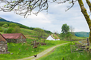 Hen in old farming scene at Auchindrain highland farming township settlement and village folklore museum at Furnace near Inveraray in the Highlands of Scotland