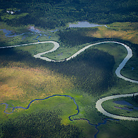 Canada, BC - Great Bear Rainforest, Aerial 2011