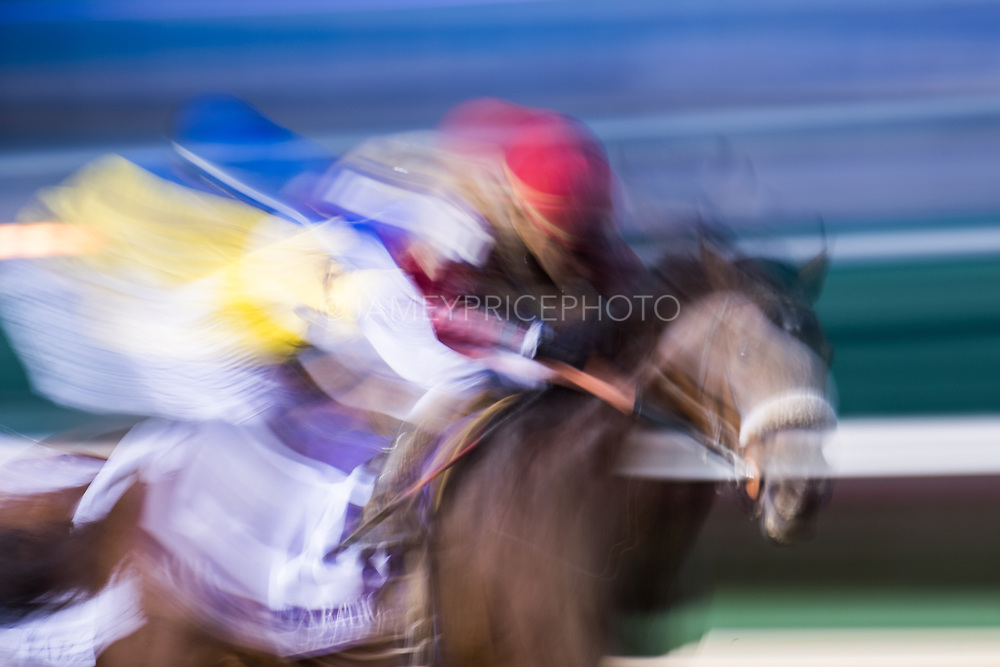 November 1-3, 2018: Breeders' Cup Horse Racing World Championships. Rocketry and jockey Joel Rosario win the Marathon Stakes race against Dabster and jockey Joe Talamo