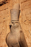 statue of god Horus in his temple in Edfou in upper egypt