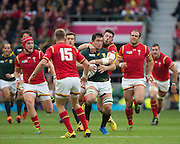 Twickenham, Great Britain,Wales , Alex CUTHBERT, attempts to rip the ball from Francois LOUW,  during the Quarter Final 1 game, South Africa vs Wales.  2015 Rugby World Cup,  Venue, Twickenham Stadium, Surrey, ENGLAND.  Saturday  17/10/2015.   [Mandatory Credit; Peter Spurrier/Intersport-images]