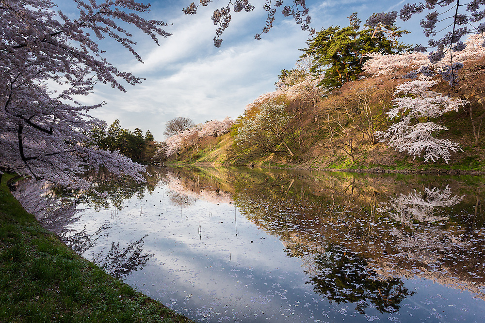 Apart from the castle, Hirosaki Park also has a couple of lakes and canals that make a stroll through this area quite enjoyable