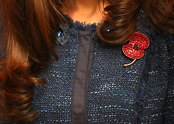 © Licensed to London News Pictures. 26/04/2012.  A diamond poppy brooch worn by the Duchess of Cambridge today where she attended a Royal British Legion reception with the Duke of Cambridge met with members of the team from the Scott-Amundsen Centenary Expedition in the Guildhall today.  Photo credit: Alison Baskerville/LNP
