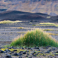 Almost every centimeter of icelandic soil is dominated by volcanic ash. The most devastating volcano eruption took place in 1783, causing a terrible famine which lasted for many years and killed nearly a quarter of the population. <br /> According to &quot;Wikipedia&quot; - The system erupted over an 8 month period during 1783-1784 from the Laki fissure and the adjoining Gr&iacute;msv&ouml;tn volcano, pouring out an estimated 14 km3 (3.4 cu mi) of basalt lava and clouds of poisonous hydrofluoric acid/sulfur-dioxide compounds that killed over 50% of Iceland's livestock population, leading to famine which killed approximately 25% of the population.<br /> The Laki eruption and its aftermath has been estimated to have killed over six million people globally, making it the deadliest volcanic eruption in historical times. The drop in temperatures, due to the sulfuric dioxide gases spewed into the northern hemisphere, caused crop failures in Europe, droughts in India, and Japan's worst famine.