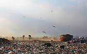 New Delhi, India - <br /> <br /> Garbage Mountain<br /> <br /> Just a few miles from the famous Akshardham temple, where tourists flock to see the structure's sandstone and marble work, the 29-hectare, slum-surrounded Ghazipur landfill in east Delhi seems a world apart. Each day hundreds of mainly migrant workers earn a meager living at the landfill by collecting recyclable material like plastic, metal and even hair to sell. The dump is the last port of call for Delhi's trash, having already been picked through by other waste collectors who collect bags of garbage directly from homes. Delhi is home to three landfills where around 6,000 tons of trash is dumped daily. Studies have shown that living near a landfill increases the risk of cancer, birth defects and asthma.<br /> <br /> Photo shows: Ghazipur landfill has more than 46 lakh metric tons of garbage. Around 2,200 metric tons of waste is dumped here daily without any prior segregation.<br /> ©Chinky Shukla/Exclusivepix Media