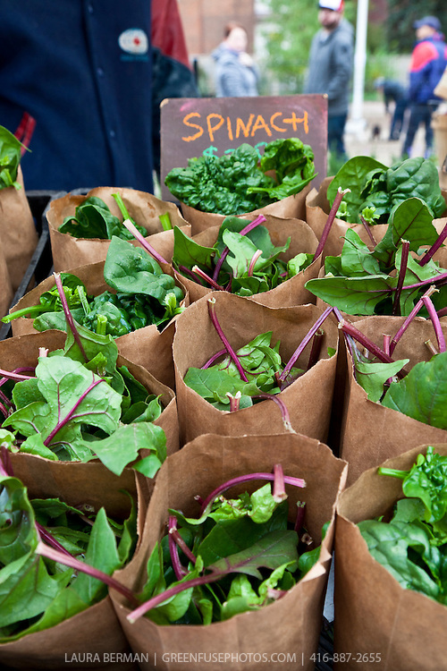 Paper bags of New Zealand spinach at a farmers market