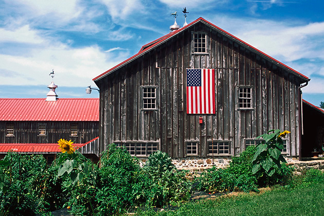 large brown barn, American flag hanging on side; garden; farm; PR