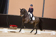 Charlotte Fry - Lord Leatherdale<br /> Christmas Show Roosendaal 2016<br /> © DigiShots