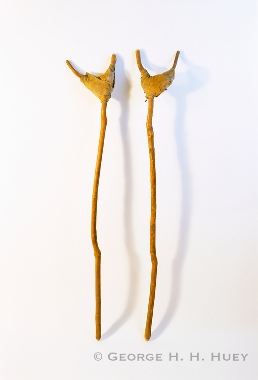 0405-1131 ~ Copyright: George H. H. Huey ~ Prehistoric crutches.  Anasazi artifact.  Mesa Verde National Park, Colorado.