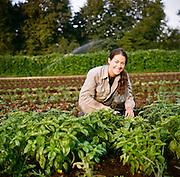 Nancy harvests basil at Persephone Farm, an organic vegetable farm in Lebanon, Oregon.