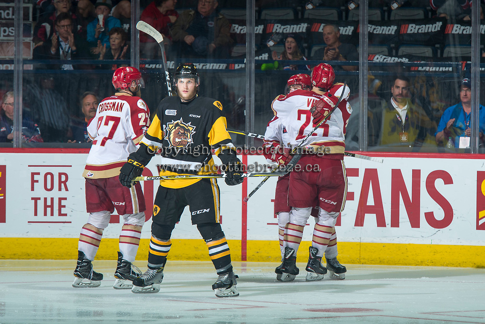 REGINA, SK - MAY 22: The Acadie-Bathurst Titan celebrate a goal against the Hamilton Bulldogs at the Brandt Centre on May 22, 2018 in Regina, Canada. (Photo by Marissa Baecker/CHL Images)