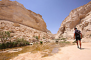 Ein Avdat (or Ein Ovdat) is a canyon in Israel, in the Negev Desert. A natural water pool at the desert oasis