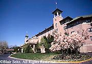 Hershey, PA, Hershey Hotel, Springtime, Magnolia Tree