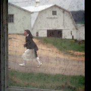 Sister Kathleen O'Neill takes her daily walk on the grounds of Our Lady of the Mississippi Abbey, a monastery of Trappist nuns.  Part of area includes a farm where corn and soybeans are harvested by the nuns.  The community of 22 Roman Catholic women follow Jesus Christ through a life of prayer, silence, simplicity and ordinary work.  Their home is a beautiful monastery which sits high on a bluff, overlooking the Mississippi River.