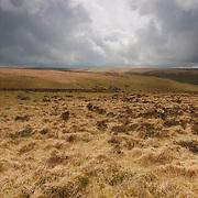 The highlands of Exmoor