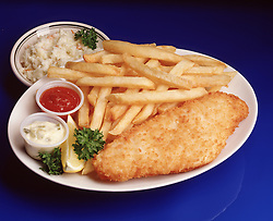 fried fish filet dinner chips french fry fries tartar sauce cole slaw lemon wedge garnish catsup ketchup blue plate special