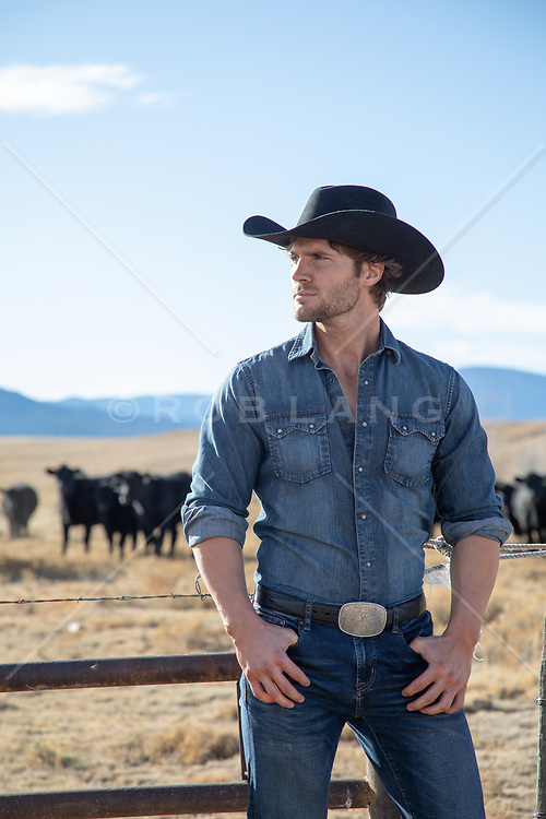 All American cowboy on a cattle ranch
