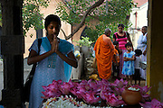Pilgrims at Temple of the Tooth, Kandy.