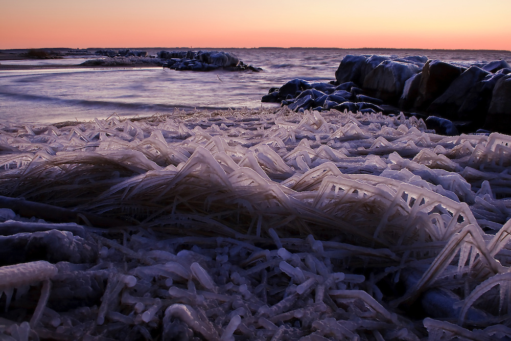 Sea spray ice coated grass and jetties along the Chesapeake Bay, photographed just after sunset on a bitterly cold December day, Eastern Neck National Wildlife Refuge, Rock Hall, Maryland.