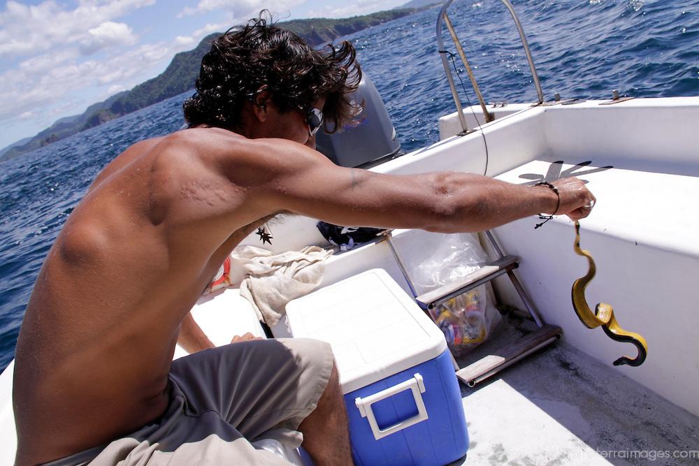 Central America, Costa Rica, Tamarindo. Costa Rica local handling a venemous Sea Snake.