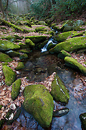 Creek meanders through mossy green boulders, Great Smoky Mountains National Park
