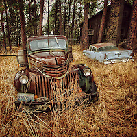 Automobile abandoned in woods