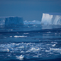 Antarctica, Erebus and Terror Gulf, Massive tabular icebergs float in Weddell Sea at dusk in early summer