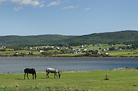 Margaree Harbour, Nova Scotia, Cape Breton Island Nova Scotia