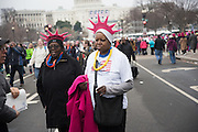 Womens's March on  Washington DC. 21 January 2017