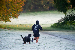 ©Licensed to London News Pictures 08/11/2019.<br /> Sidcup,UK. An early morning runner with his rottweiler on a cold and frosty autumnal weather morning at Footscray Meadows in Sidcup, South East London. Photo credit: Grant Falvey/LNP