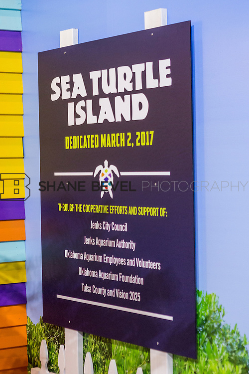 3/2/17 10:58:41 AM -- The ribbon cutting and grand opening of the new sea turtle exhibit at the Oklahoma Aquarium in Jenk, Okla. <br /> <br /> Photo by Shane Bevel