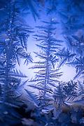 Winter frost detail in Brandon, Vermont
