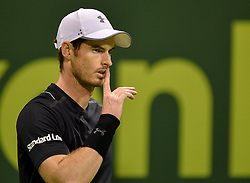 DOHA, Jan. 7, 2017  Andy Murray of Britain gestures during the men's singles semifinal with Tomas Berdych of the Czech Republic at the ATP Qatar Open tennis tournament in the Khalifa International Tennis Complex in Doha, capital of Qatar, on Jan. 6, 2017. Andy Murray won 2-0. wll) (Credit Image: © Nikku/Xinhua via ZUMA Wire)