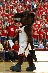 Jan 21, 2012; Santa Clara CA, USA;  The Santa Clara Broncos mascot stands on the court against the St. Mary's Gaels during the first half at the Leavey Center.  St. Mary's defeated Santa Clara 93-77. Mandatory Credit: Jason O. Watson-US PRESSWIRE