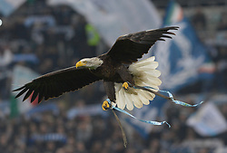 March 2, 2019 - Rome, Lazio, Italy - The eagle Olimpia during the Italian Serie A football match between S.S. Lazio and A.S Roma at the Olympic Stadium in Rome, on march 02, 2019. (Credit Image: © Silvia Lore/NurPhoto via ZUMA Press)