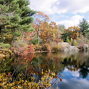 Late fall colors at the Silver Lake in Breakheart Reservation Saugus, Massachusetts