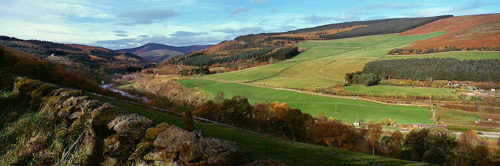 The Tweed Vallley by Thornilee Plantation in the Scottish Borders in Autumn