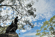 Statue of Henry Lawson, by sculptor George Lambert. This was Lambert's last work. The Domain, Sydney, Australia