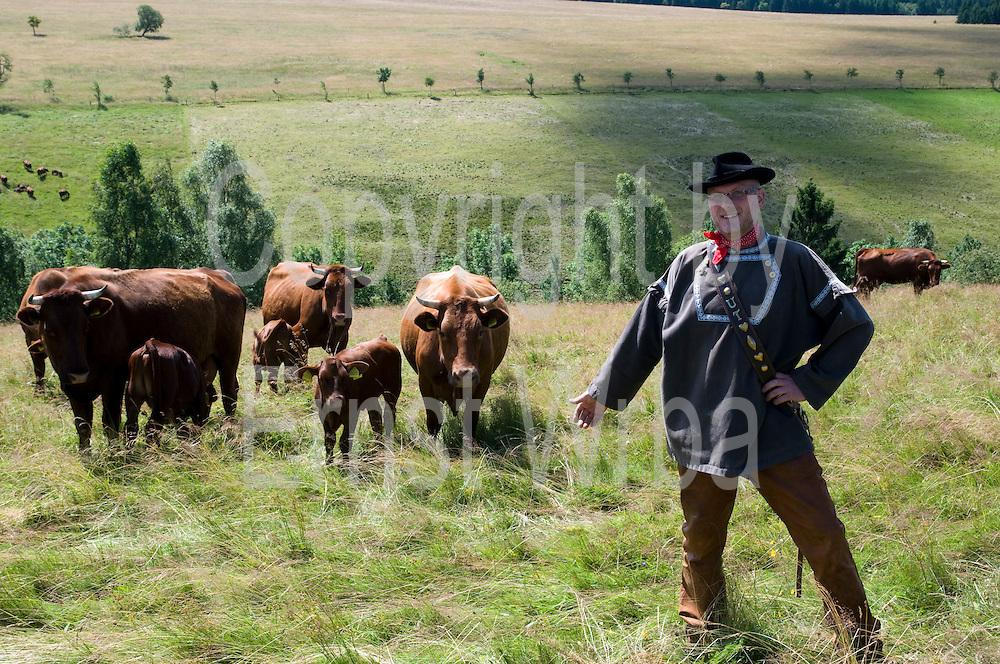 Brockenbauer Uwe Thielecke in Tracht, Rinderherde Rotes Höhenvieh, Tanne, Harz, Sachsen-Anhalt, Deutschland | farmer in traditional costume, cattle Rotes Hoehenvieh, Tanne, Harz, Saxony-Anhalt, Germany