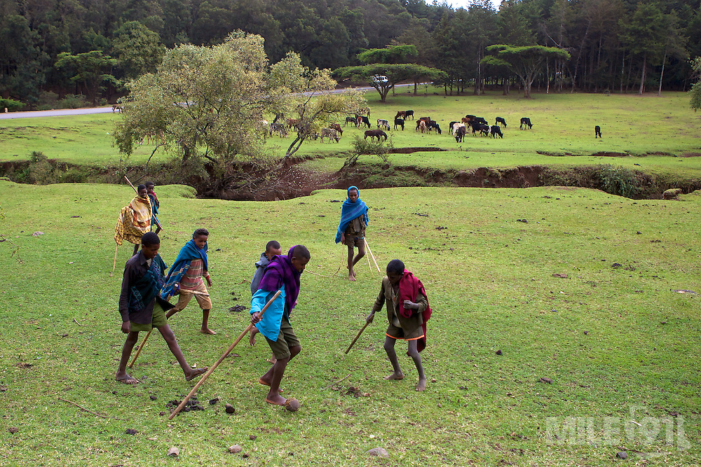 A group of young boys play a quick game of football as they look after their familys cattle which are grazing on the lush green grass alongside a river in Ethiopia.