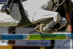 CLEMENS Caroline (GER), Peking Queen<br /> Paderborn - OWL Challenge 5. Etappe BEMER Riders Tour 2019<br /> SPOOKS-Amateur Trophy - Large Tour <br /> Zwei-Phasen Springprüfung, international <br /> Finale Heinzelmännchen Young Riders Amateur Cup 2019<br /> 14. September 2019<br /> © www.sportfotos-lafrentz.de/Stefan Lafrentz
