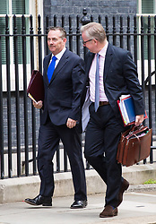 London, July 18th 2017. International Trade Secretary Liam Fox and Secretary of State for Environment, Food and Rural Affairs Michael Gove attend the last cabinet meeting before the Parliamentary summer recess at Downing Street in London.