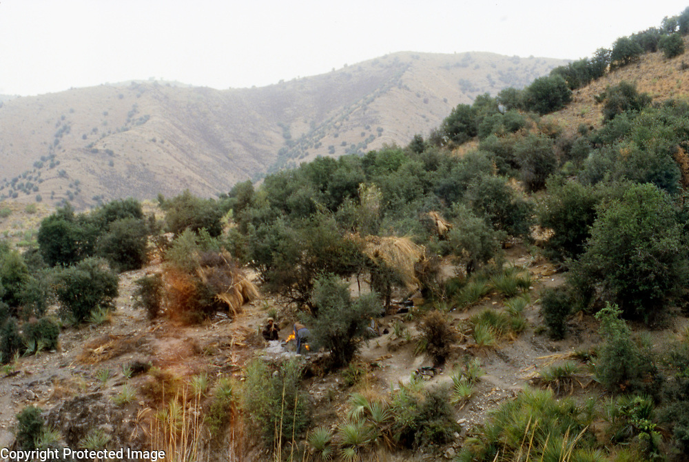 26 July 1985<br />
