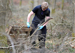 ©London News pictures. 22/03/11.  A volunteer searches the woods. Locals and friends of Sian O'Callaghan help Police in the search in Savernake Wood, Wiltshire, today. Detectives continue investigating the disappearance of office administrator Sian O'Callaghan. The 22-year-old disappeared after leaving Suju nightclub in Swindon at about 2.50am on Saturday to walk the half-mile home to the flat she shared with her boyfriend Kevin Reape. Picture Credit should read Stephen Simpson/LNP