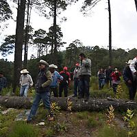 Temoaya, México (Noviembre 14, 2016).- Ejidatarios de Santiago Temoaya se encuentran preocupados por la tala clandestina que se presenta en la zona desde hace cuatro años, se han organizado delegados para poder cuidar sus bosques, realizaron un recorrido por algunos parajes y piden a las autoridades se realice una reforestación y se pare con la tala de su bosque.  Agencia MVT /Crisanta Espinosa